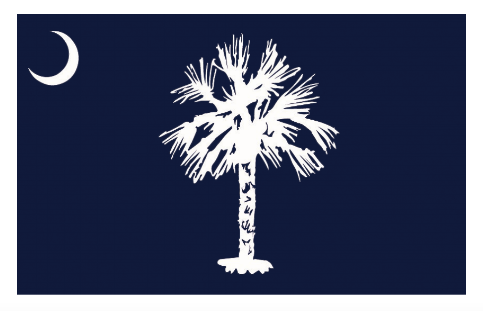 what does the flag of south carolina look like