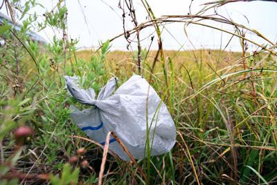 riverside plastic bag.jpg (copy)