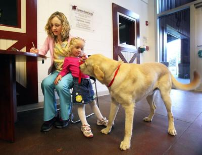 Vets: Shelters hurt business