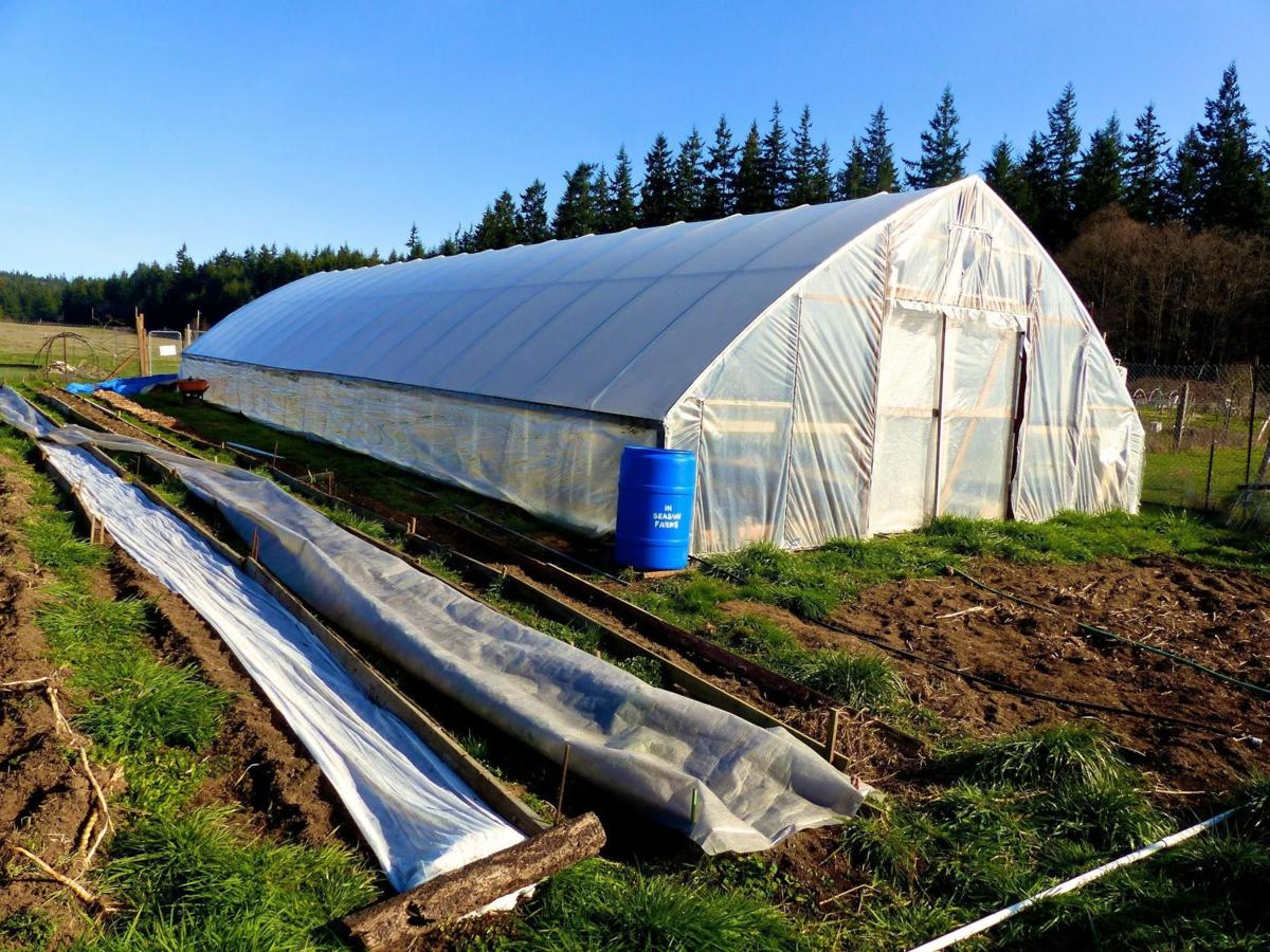Tunnels are an alternative to greenhouses