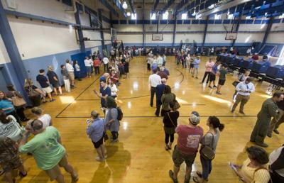 Voting large lines .JPG (copy)