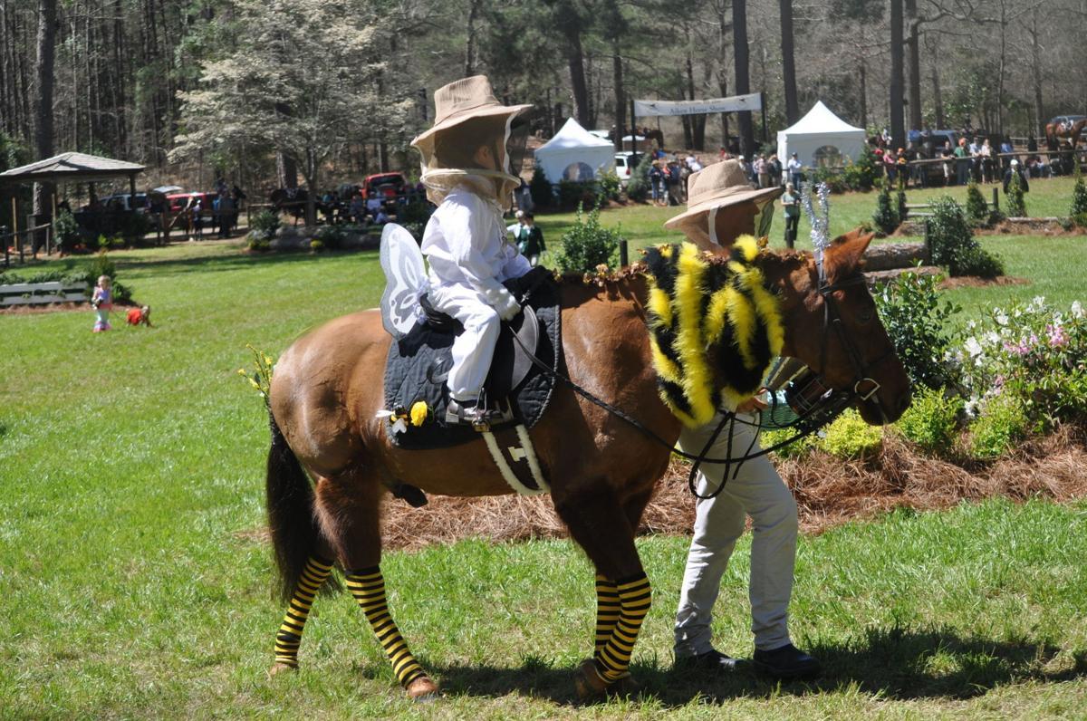 Aiken Horse Show Day 2-832.JPG