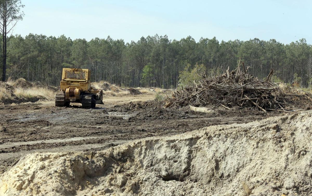 Cease-and-desist order lifted at Awendaw park site