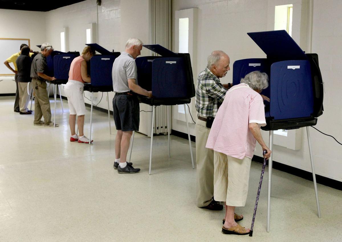 voting (copy)