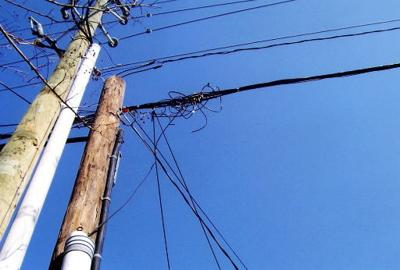 Utilities respond to wild wires