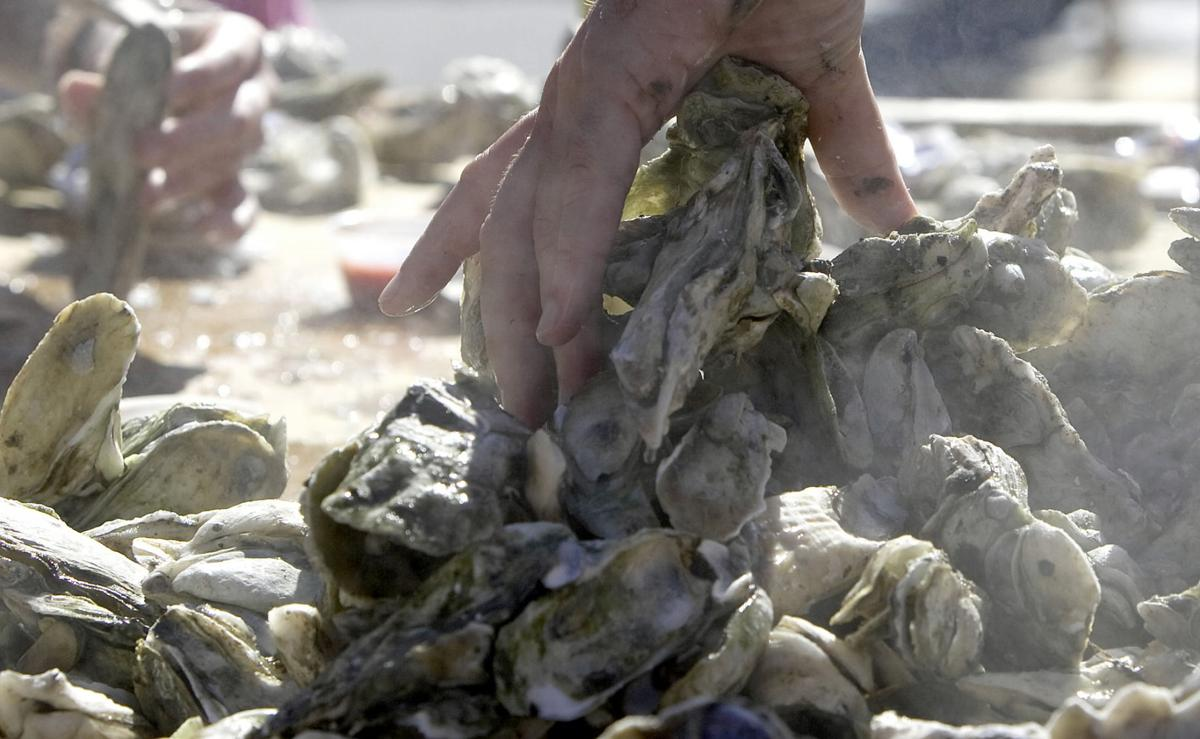 QUICK COLUMN: Local oyster roasts benefit local causes