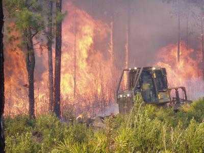 S.C. Forestry Commission bulldozer at fire (copy)