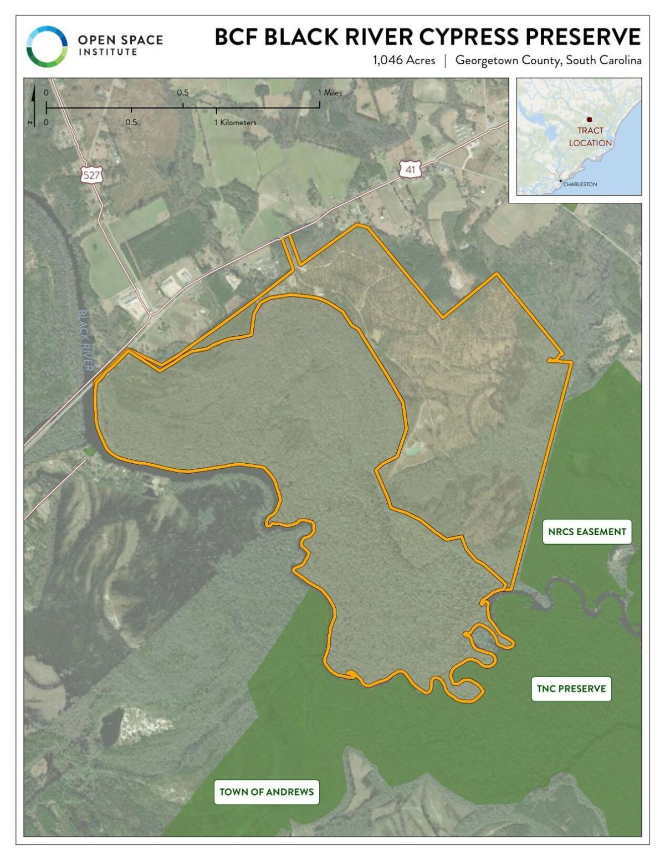 BFC Black River Cypress Preserve