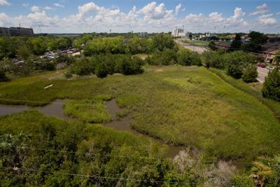 gadsden creek.JPG (copy)