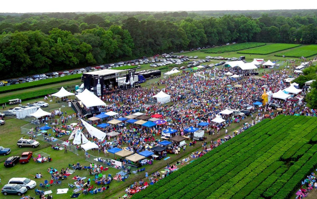 First Flush Festival not returning for 10th year at Charleston Tea Plantation
