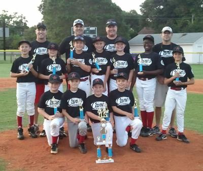 Youth Baseball Team Achieves Perfect Record Local And State News Postandcourier Com