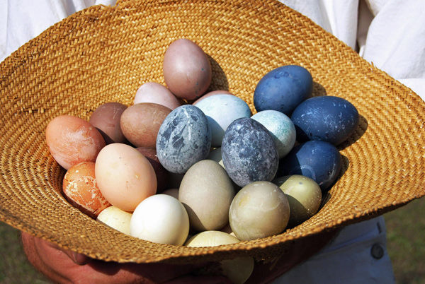 After the Easter hunt, are eggs safe to eat?