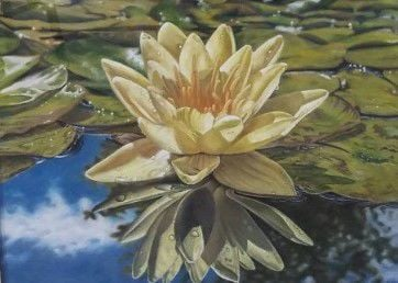 Aiken Artist Guild Show Water Lily - Kimberly Boucher