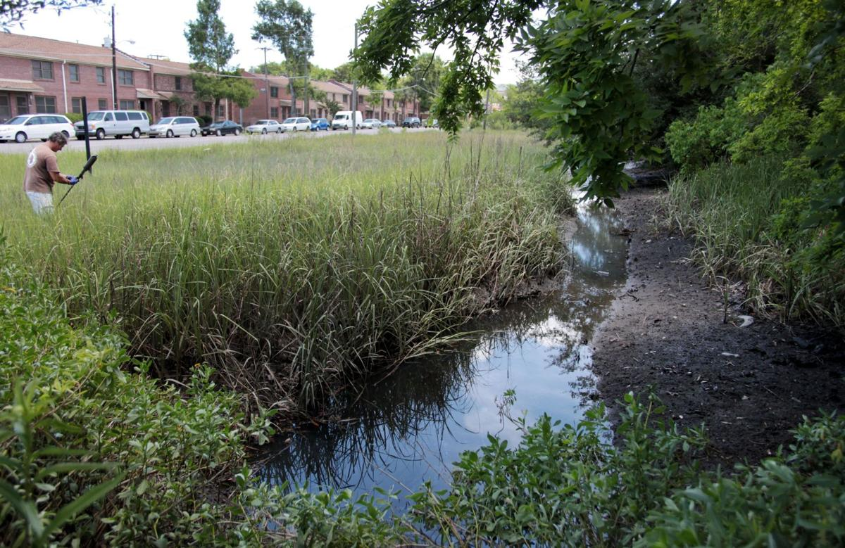 A wetland, or drainage ditch to fill?