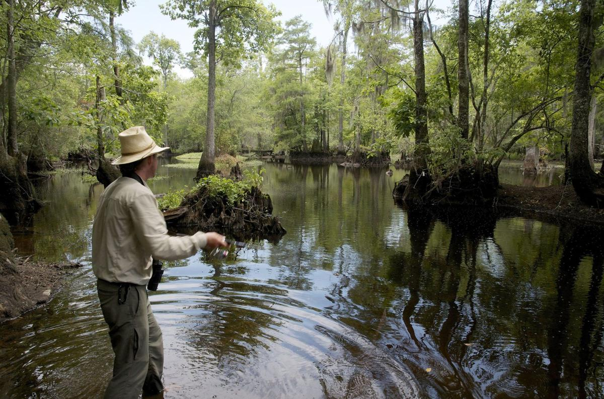 Black River protections to be open to public