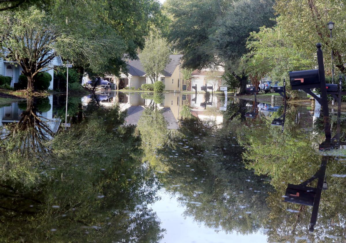 West Ashley flooding