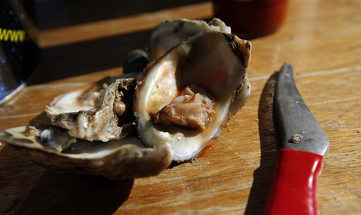 Music and Oysters for Wildlife has a lot to celebrate in year 10