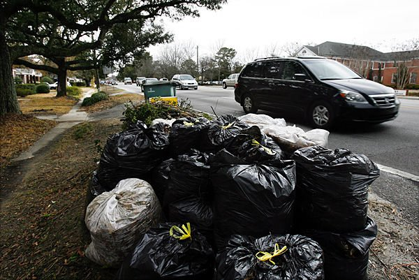 Plastic leaf bags likely on way out: Charleston County set to move to paper yard-waste containers