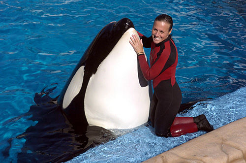 Friends, family say SeaWorld trainer was living her dream