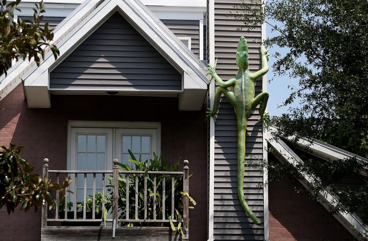 'LIZARD HOUSE' Folly Beach home captures spirit of island