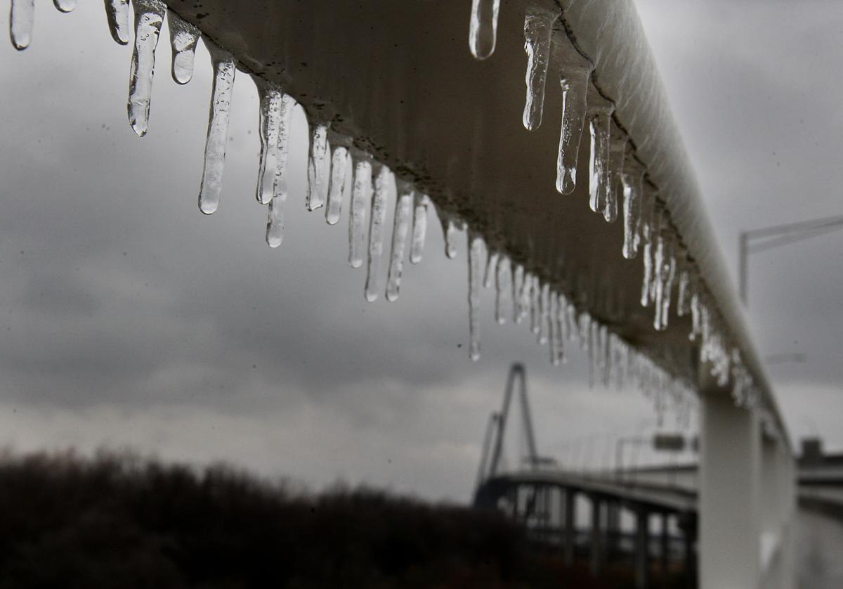 Icy Weather in the Lowcountry