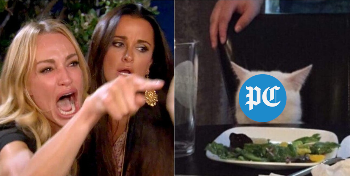 2019 In Review The Post And Courier Digital Team S Favorite Memes Of The Year Postandcourier Com