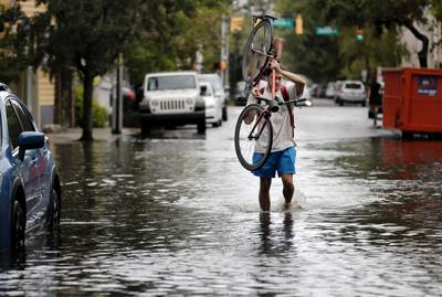 Charleston's floodwaters carry dangerous levels of bacteria, even when it's sunny