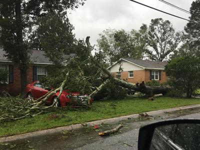 Hurricane Dorian brings power outages, downed trees across North Charleston communities