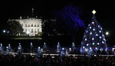 Ornaments to decorate tree in D.C.