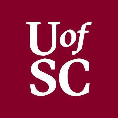 University of South Carolina 2019 logo