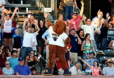 RiverDogs return to The Joe for 20th season pitching some good deals