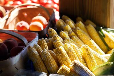 S.C. farmers faring better than a year ago