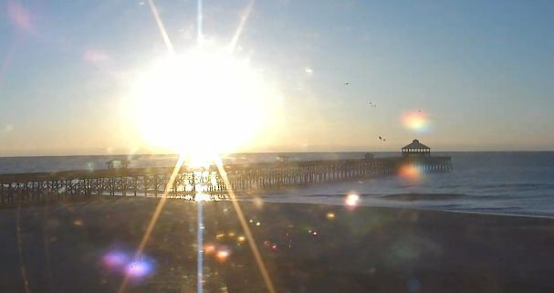 Sunny and mild in Charleston today