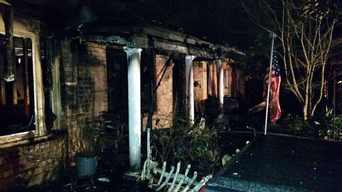Two people, two dogs perish in fire