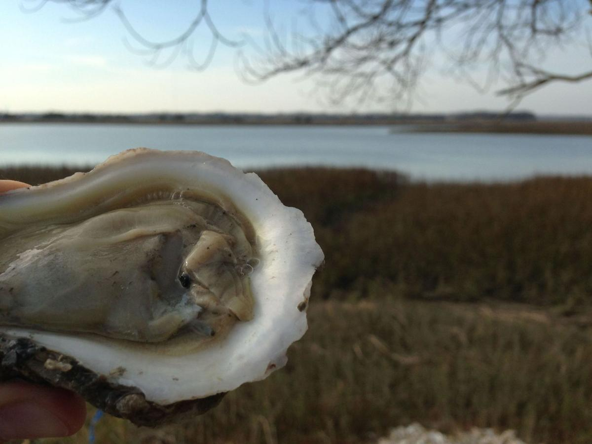 Isle of Palms Exchange Club hosts oyster roast fundraiser