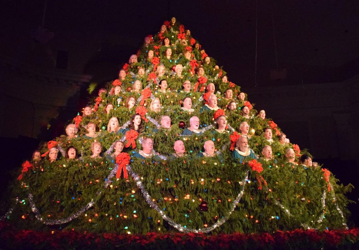 Singing Christmas Tree 2020 Columbia Sc Singers needed for Living Christmas Tree | Community