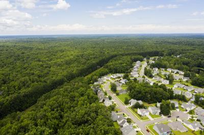 long savannah aerial.jpg (copy)