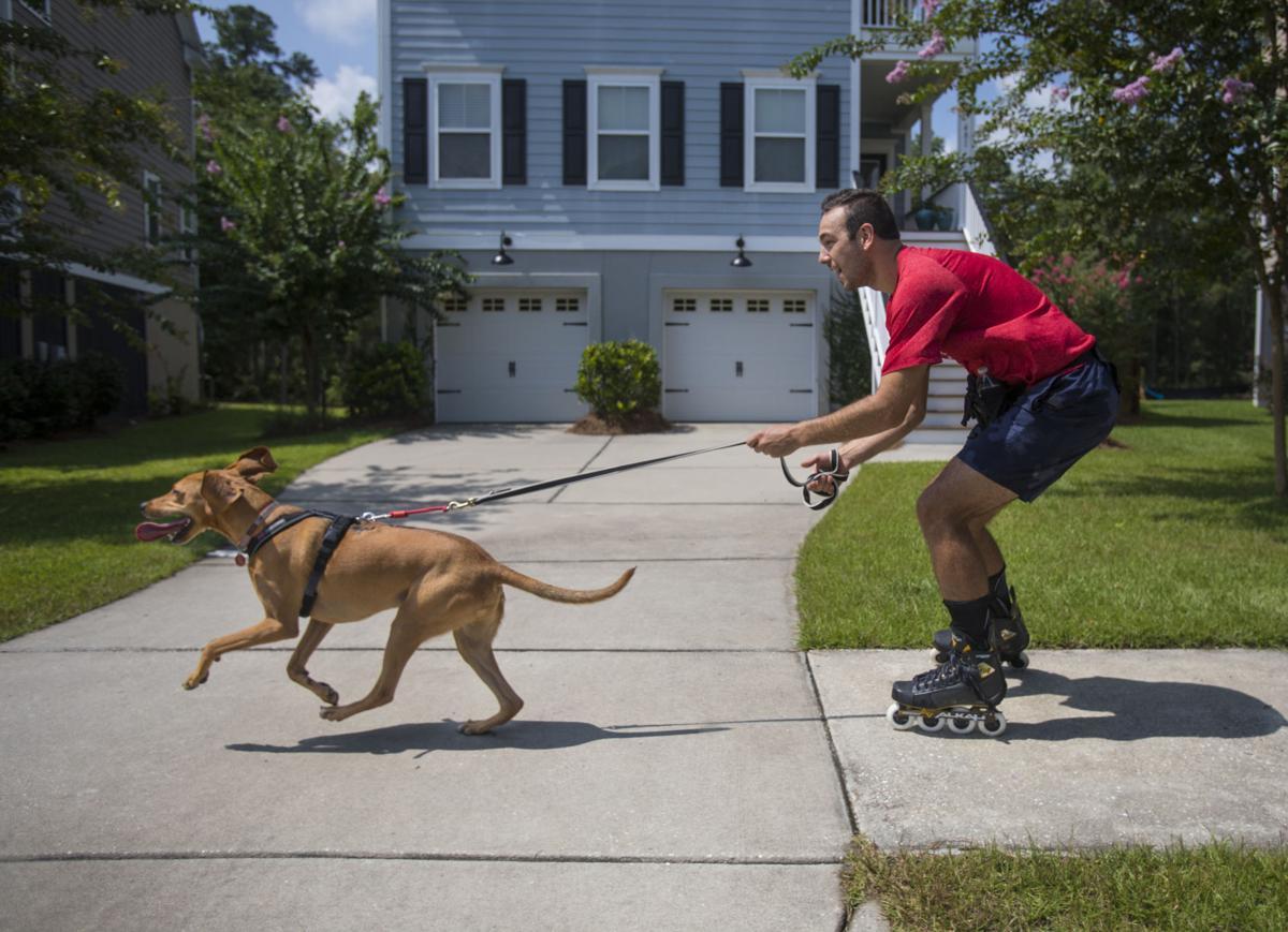 Skate Dogtor