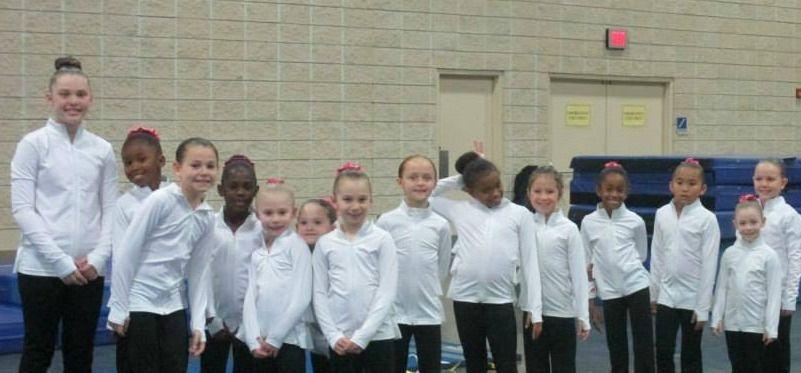 Summerville YMCA gymnasts earn medals