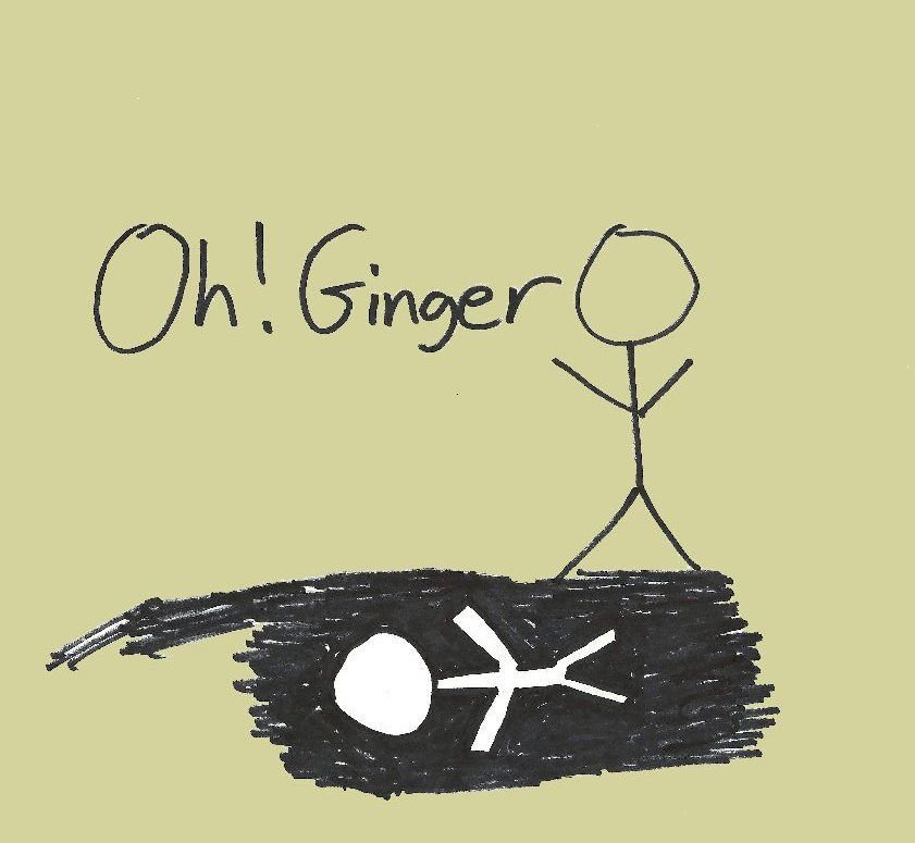 CD reviews: Oh! Ginger, Donald Glover, Wilson Phillips
