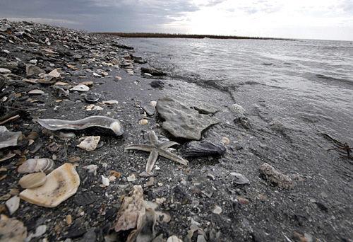 Oil slick a major threat to coastline