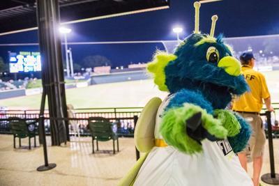 Mason Columbia Firelfies mascot