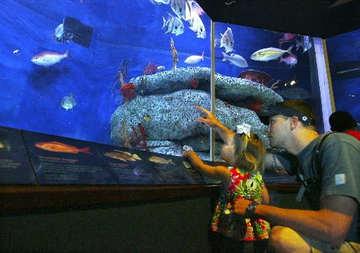 Dad's day special at the Aquarium, some new hours, programs planned