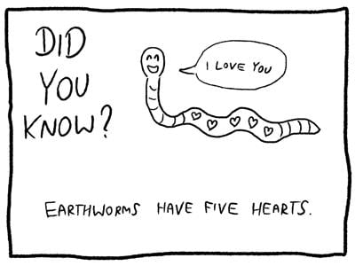 Earthworm five hearts trivia