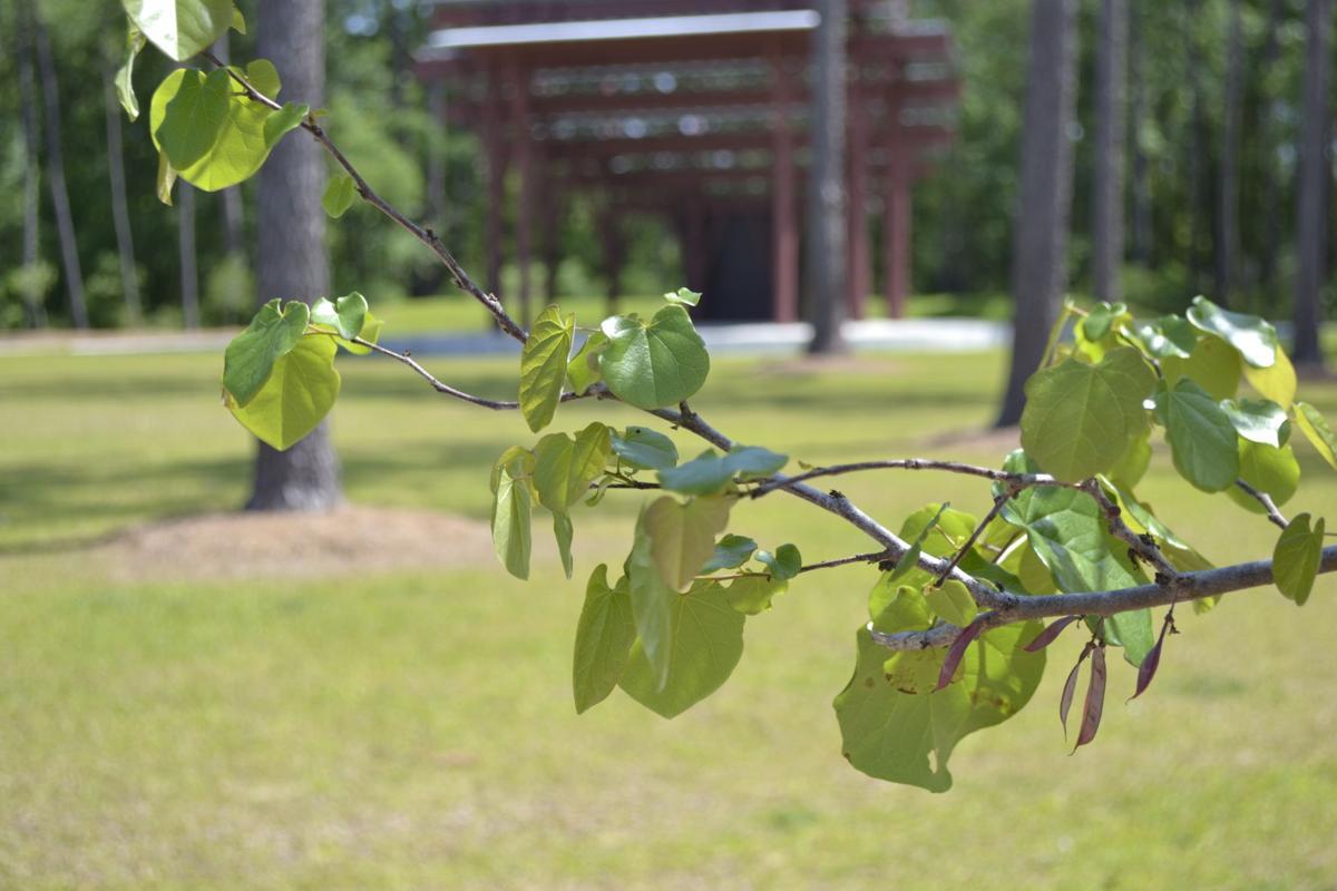 Surette Nature Center