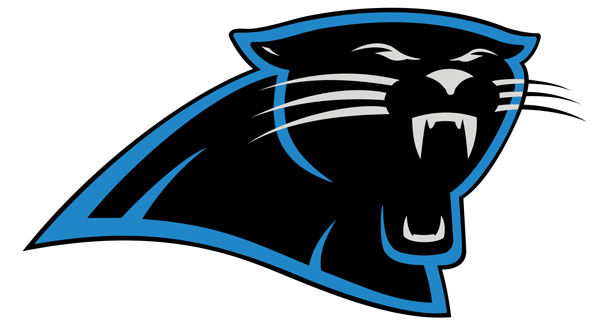 QB Newton guides Panthers past Jags