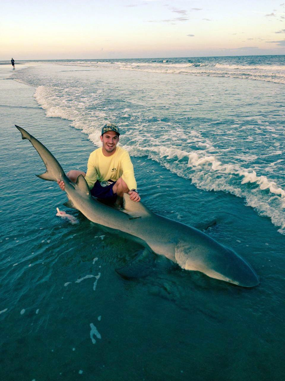 Angler hauls in 10-foot shark on Isle of Palms hy hy yhhhh