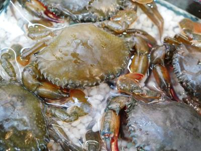 Soft-shelled crabs
