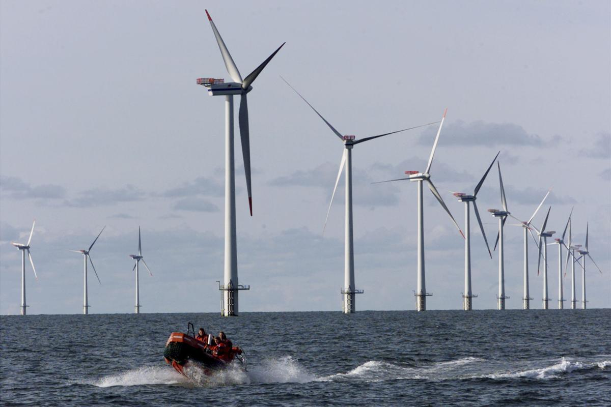North Charleston mayor joins wildlife, environmental groups in supporting offshore wind power