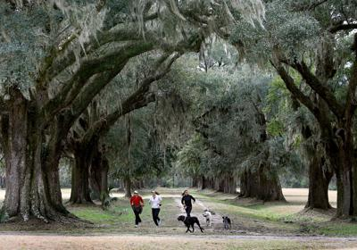 2015 marked by parks, planning and people